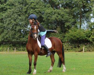 horsewoman-1781972_640